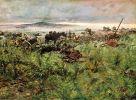 3.07.1866. Pozycja zniszczonej austriackiej baterii w pobliżu Chlum