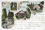 Las Miejski na przełomie XIX/XX wieku był miejscem wypoczynku mieszkańców Braniewa. Był bardzo dobrze zagospodarowany, a uświetniał go obelisk poświęcony jegrom poległym w wojnie 1866r.
